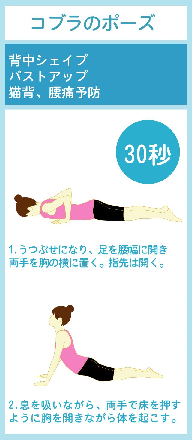 胸とお腹周辺を広範囲にストレッチする方法