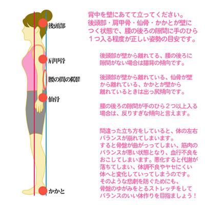 正しい姿勢を身につけることも骨盤の矯正に役立つ
