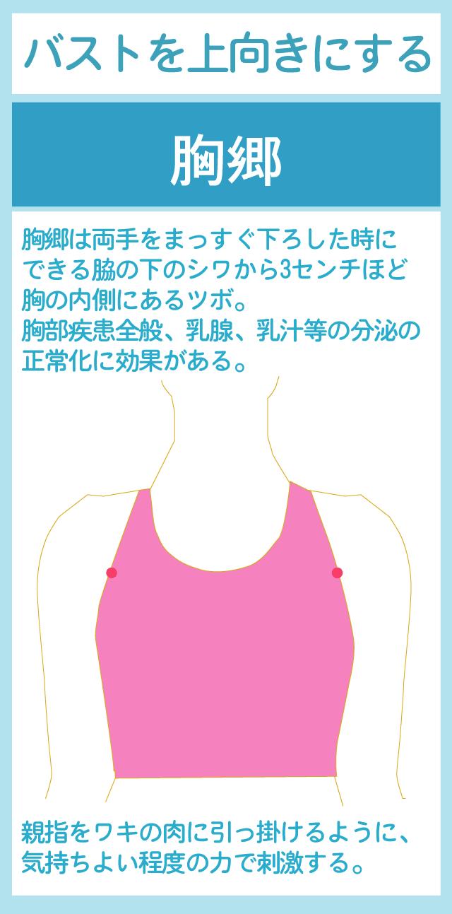 胸郷(きょうきょう)のツボ