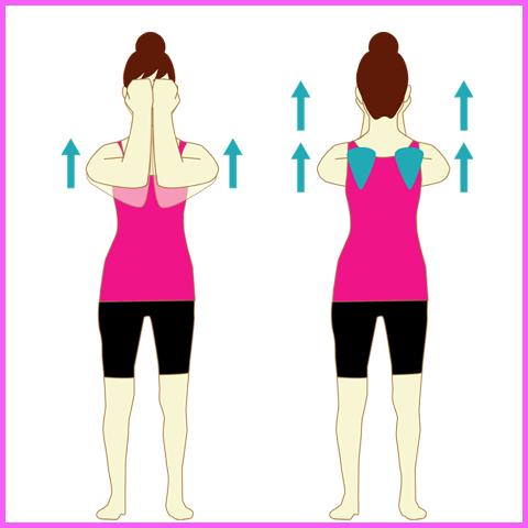 肩甲骨周りの筋肉をほぐす上げ下げ運動2
