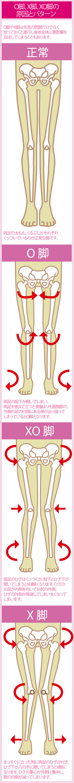 O脚やX脚の特徴