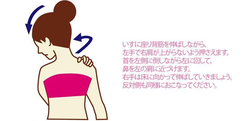 なで肩・いかり肩の解消に役立つ肩甲拳筋(けんこうきょきん)のストレッチ