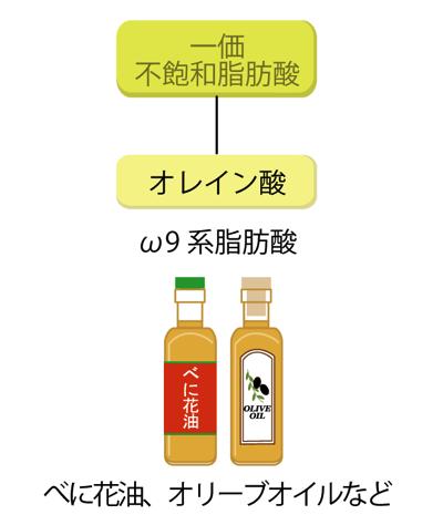 ω9系脂肪酸