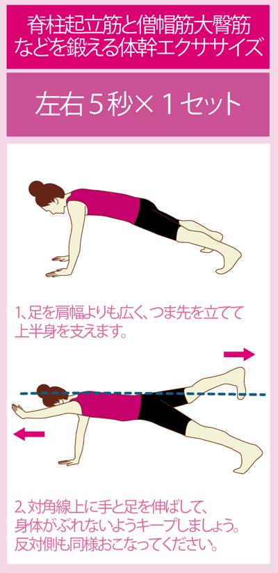 首猫背の緩和に役立つ体幹トレーニング:ダイアゴナル