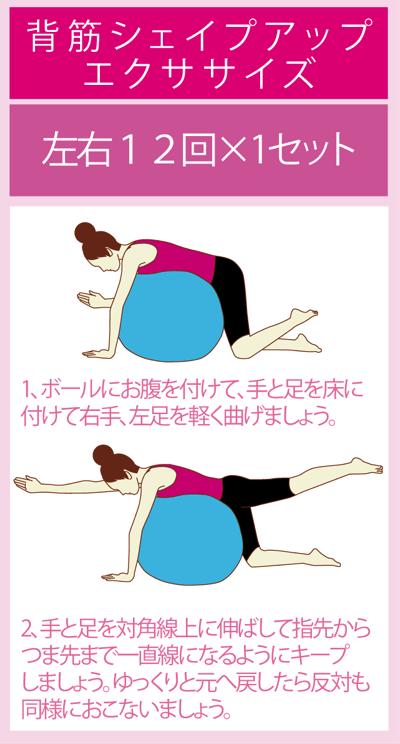バランスボールで背筋を鍛える体幹トレーニング
