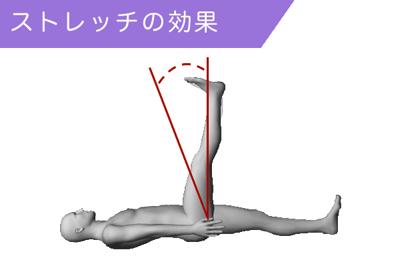 ストレッチの効果:関節の可動域を広げる