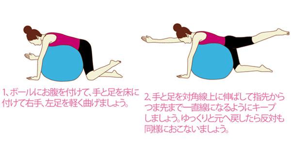 背筋を鍛えるバランスボールの使い方
