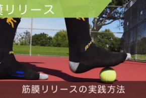 筋膜リリース(筋膜はがし)の方法〜フォームローラーやテニスボールで筋膜ほぐし!