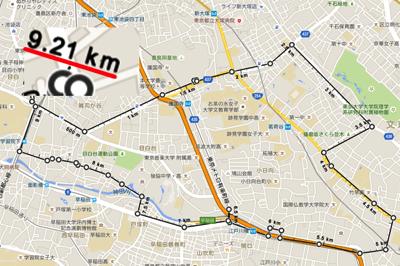 Google Mapsとの比較
