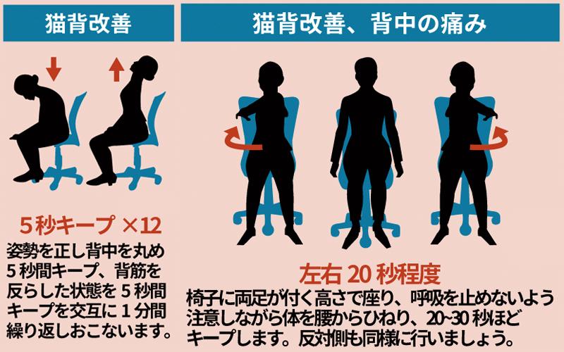 軽く左右にひねるストレッチも肩甲骨のストレッチに役立つ