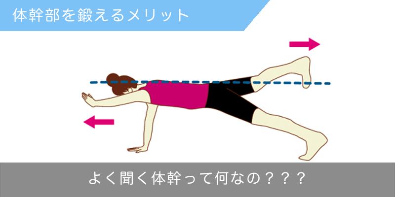 体幹部を鍛えるメリット