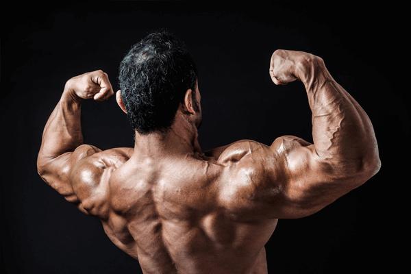 成長ホルモンとトレーニングの関係