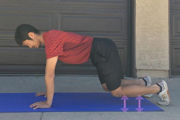 四つ這いの状態でスタンバイ:体幹トレーニングビーストのやり方