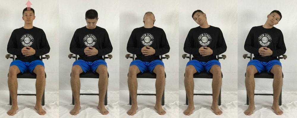 首まわしストレッチで肩甲挙筋、胸鎖乳突筋、広頚筋、僧帽筋、頭板状筋をほぐす