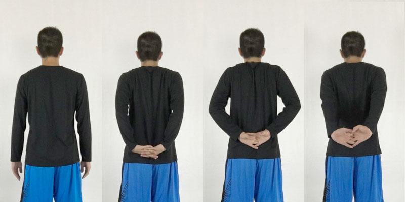 手を組んで地面へ腕伸ばしストレッチは僧帽筋、肩甲挙筋、前腕の屈曲筋、大胸筋、三角筋の前部をほぐす